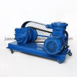 High Performance V-Belt Drive Oil Fuel Rotary Pump