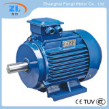 Electric Motor with Ie3 Standard