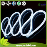 Changeable Emitting Color and Neon Lights Item Type LED