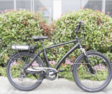 Wide Tire Mountain E-Bicycle with 36V Lithium Battery