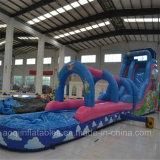 Aoqi Design Inflatable Water Big Slide (aq1036-1)
