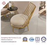 Special Hotel Furniture with Metal Dining Room Chair (Yb-DC401)