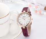 New Arrival Fashion Simple Genuine Leather Women Watch