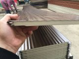 PU Insulated Decorative Movable Room External Wall Panel