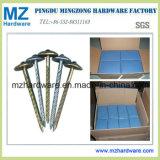 Galvanized Umbrella Roofing Nail