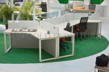 Practical Office Partition Office Workstation Office Furniture (SZ-WS63)