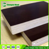 Brown Phenolic Film Faced Plywood with Poplar Core and WBP Glue