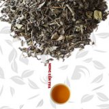 Chinese Green Tea with Mint Aroma Op Green Tea
