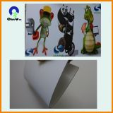 Factory 1.8mm PVC Foam Sheet for Exhibition