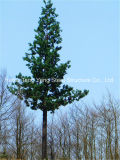 Camouflage Telecom Poles and Palm Tree Monopole Tower