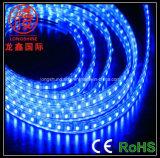 High Light LED Light