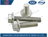 GB5789 Stainless Steel Large Hexagon Flange Bolt