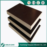 Best Selling 15mm Building Construction Plywood