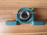 Bearing Housing Pillow Block Bearing Ucp 205 Bearing Unit