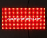 P10 Indoor & Outdoor Single Color LED Display Module