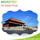 Photograph Print on Metal