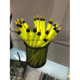 Black Wood Color Pencil for Kids and Students