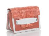 Fashion Custom Guoci OEM Women Lady Handbag (LDO-15315)