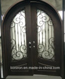 Interior Front Wrought Iron Entry Window and Doors Design