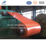 Color Coated Gi Steel in Coil