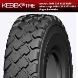 Radial OTR Tyre 1800r33 for Promotion