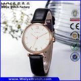 Leather Strap Quartz Woman Factory Watch (Wy-070C)