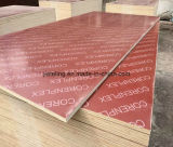 Red Color Film Faced Plywood Price