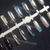 Holographic Pearl Pigments Nail Art Reflective Powder