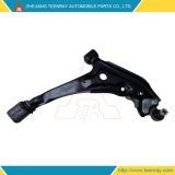 Global Market Popular Cheap Control Arm for Nissan