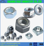 Hex Nuts /Hex Flange Nuts/ Square Nut/Acorn Nut / Cap Nut /Nylon Insert Nuts / Nylon Insert Hex Lock Nut/DIN934/ DIN985/DIN6923/DIN1587/ ISO4032 / 1942h /DIN982
