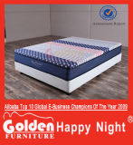 Alibaba Foshan Golden Furniture Chinese Mattress CF16-10
