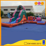 Fascinating Inflatable Water Obstacle Course (AQ14137)