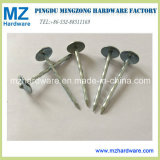 """Bwg9*2.5"""" Hot Sales Umbrella Head Smooth Shank Roofing Nail"""
