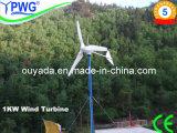 500W/600W/1kw Wind Turbine Project Cases
