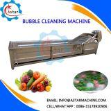 Large Capacity All Kind of Vegetable Fruit Cleaning Machine (Washing Machine)