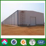 Steel Structure Warehouse/Design Workshop/Factory Building