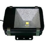 100W LED Outdoor Garden Waterproof Light Floodlight Flood Lamp