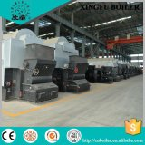 Dzl Series Chain Grate Coal Fired Hot Water Boiler From China