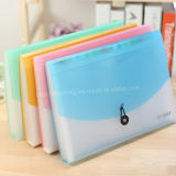 Clear Display Book in Bright Color/File Folder