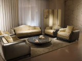 Luxurious Living Room Furniture Collections (E6)
