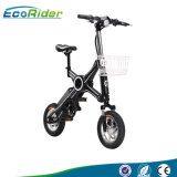Ecorider Two Wheel Electric Scooter, Foldable Electric Scooter, Mini Folding Electric Bike