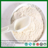 Fat Powder with Vegetable Oil and Milk Protein