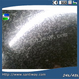 Galvanized Steel Coil (gi) From Santiway