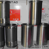 Faw Foton Sinotruck Steyr HOWO Truck Parts Cylinder Liner