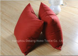 China Professional Pillow Pillow Shell Wholesalers Pillow