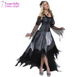 Sexy Halloween Wholesale Spider Queen Adult Costume L15534