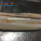 Exporting Frozen Seafood Shark Fillet