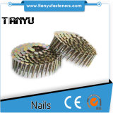 Yellow Zinc Galvanized Coiled Roofing Nails in China