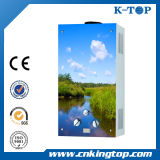 CE Hot Selling Gas Water Boiler, Gas Water Heater