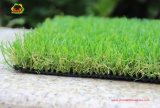 Competitive Pice Artificial Grass for Home Backyard